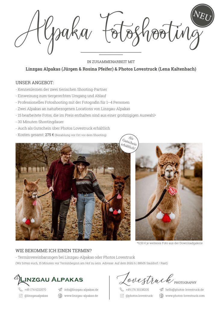 Angebot für ein Alpaka Fotoshooting in Zusammenarbeit mit Lovestruck
